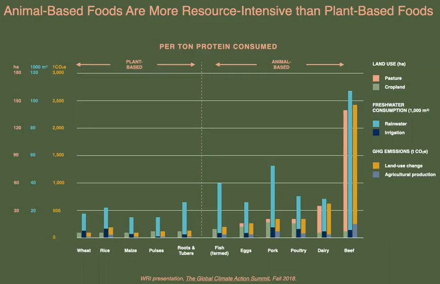 Emissiosns and Resource use per ton of protein (veg vs meats)