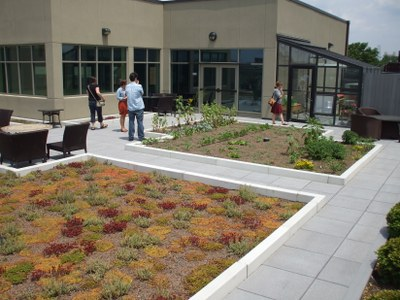 Green Roof and Vegetable Garden atop Early Learning Campus at Family Scholar House