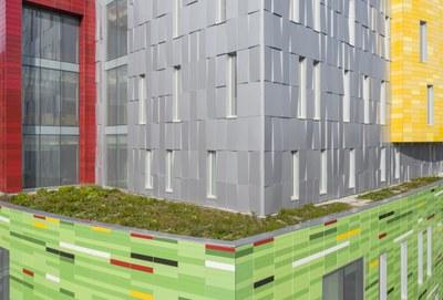 Green Roof on Novak Center of Children's Health
