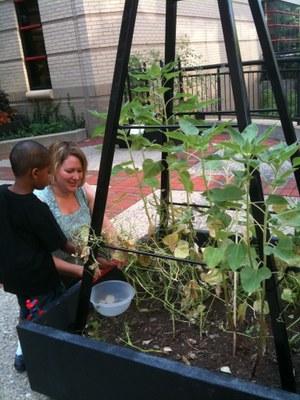 HSC Feeding Therapy Garden 7-29-11