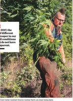 UofL Hemp Trial 2017 (UofL Magazine Winter-Spring 2018)