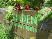 Garden Commons raised bed
