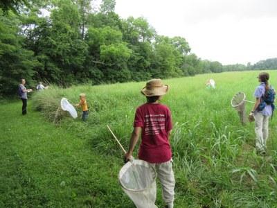 Horner Wildlife Refuge Butterfly Count 2015