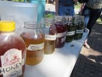 Garden Commons Herb & Tea Workshop