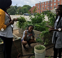 Garden Commons SOUL 2018 Workday