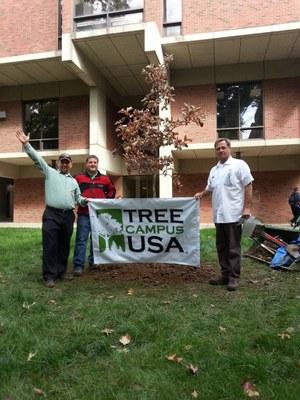 UofL Arbor Day tree planting, October 2014