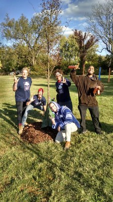 UofL Students at Louisville Grows Tree Planting