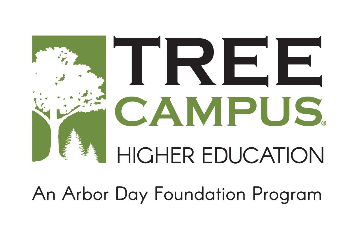 TreeCampusUSA.png