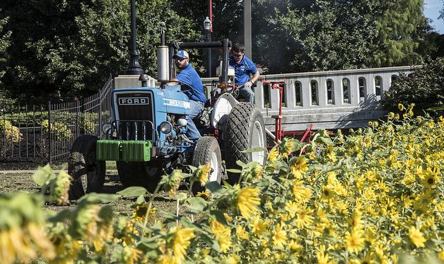 Farmers flock to Conn Center forum on industrial hemp