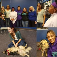 Furry Friends Bring Fun & Therapy for Women Veterans